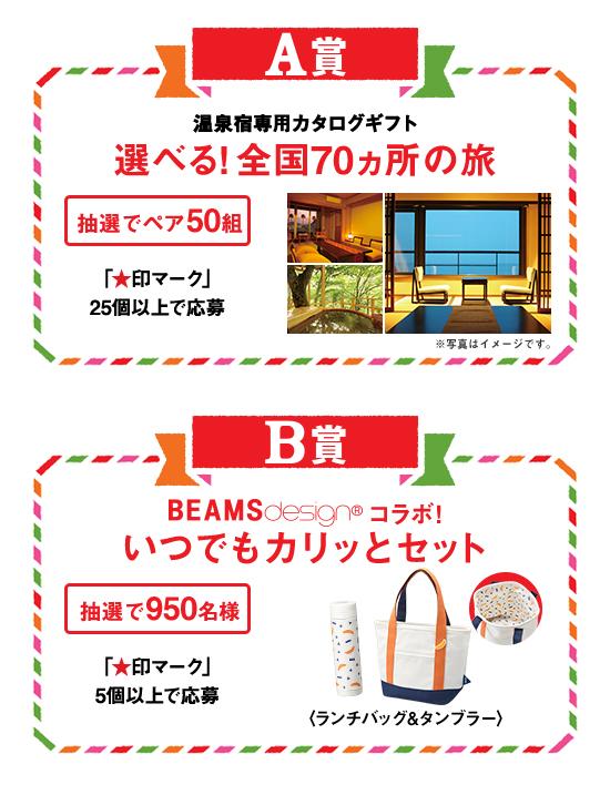 温泉宿専用カタログギフト、ビームスデザイングッズ