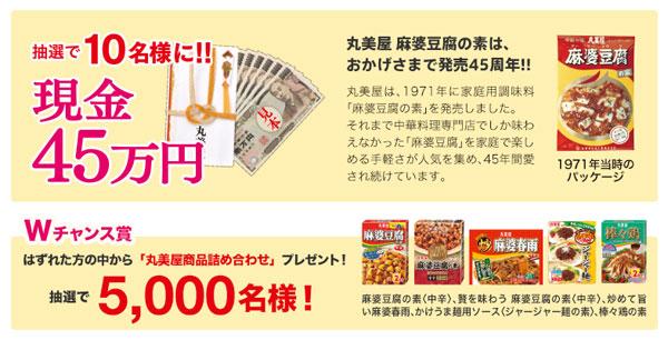 現金45万円