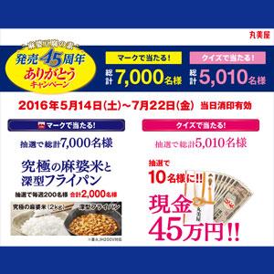丸美屋 麻婆豆腐45周年記念キャンペーン