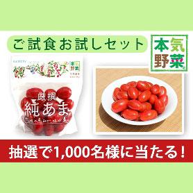 サントリー本気野菜 ミニトマト 純あま 無料プレゼント
