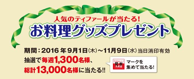 丸美屋 ティファール 2016キャンペーン