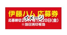 伊藤ハム 2017年 お年玉キャンペーン 応募券