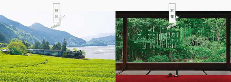 キリン生茶 2017年懸賞 生茶旅キャンペーン懸賞品