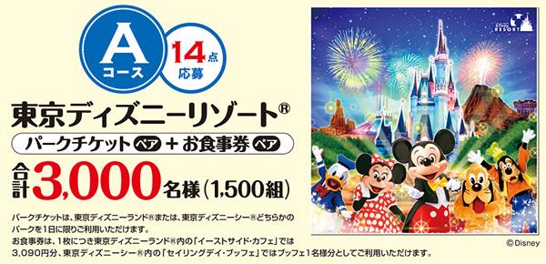 Aコース:東京ディズニーチケット