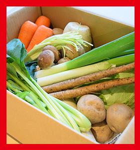 こだわり野菜詰め合わせ