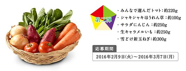 Oisixオイシックス5色の野菜セット