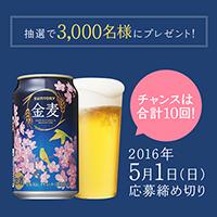 金麦 2016春 桜開花キャンペーン
