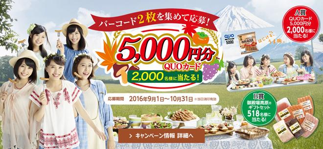 米久 ごてあらポー 2016秋 キャンペーン