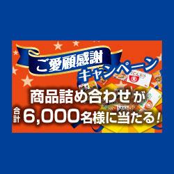 ヒガシマル うどんスープ 2016年キャンペーン