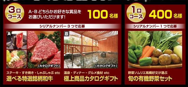 ご飯がススムキムチ 2016キャンペーン賞品