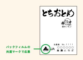 とちおとめ苺 コリラックマ キャンペーン2017 共選マーク