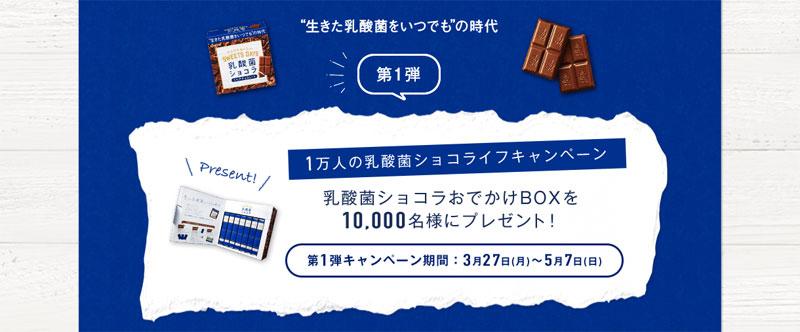 乳酸菌ショコラ おでかけBOXプレゼント