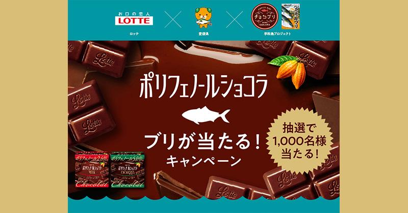 ポリフェノールショコラ チョコブリ懸賞キャンペーン2019~2020