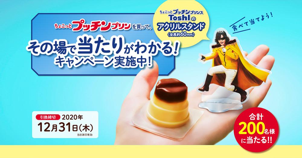ちょこっとプッチンプリン ToshI懸賞キャンペーン