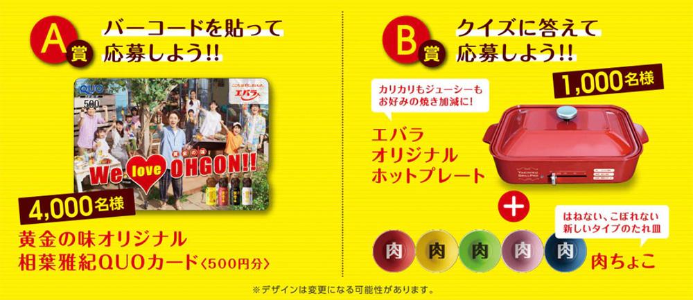 エバラ黄金の味 懸賞キャンペーン2020夏 プレゼント懸賞品