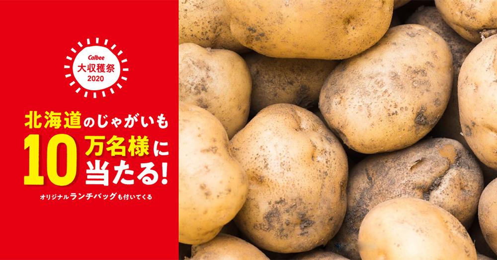 カルビー大収穫祭 懸賞キャンペーン2020