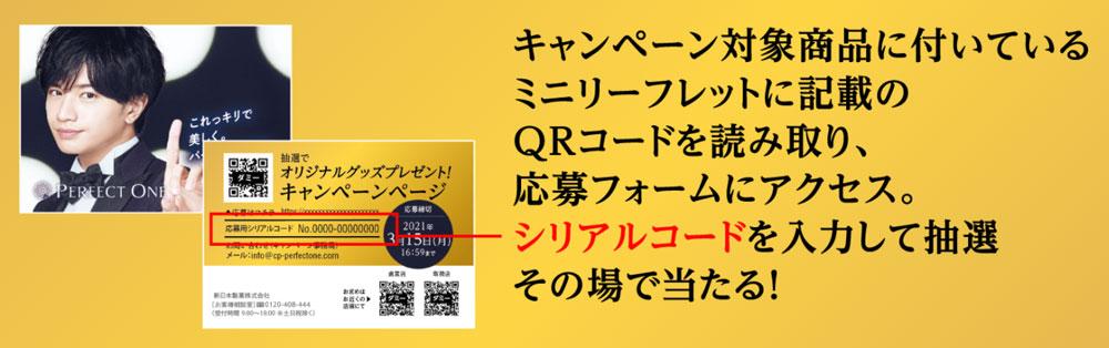 パーフェクトワン 懸賞キャンペーン2020~21 本キャンペーン リーフレット
