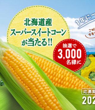 クノールカップスープ 懸賞キャンペーン2021夏 プレゼント懸賞品